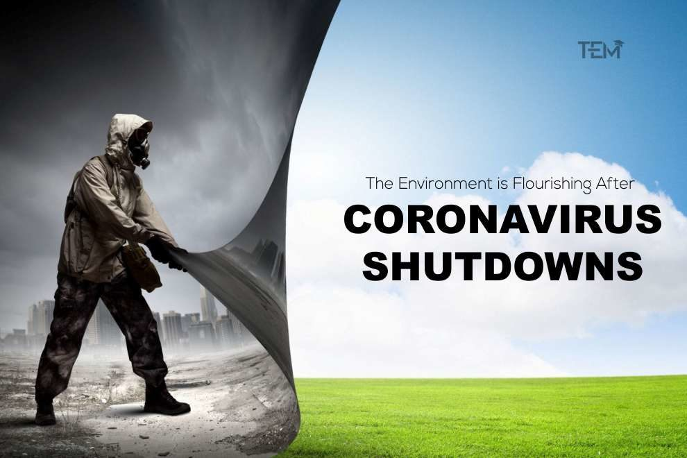 coronavirus shutdowns